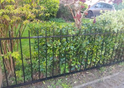 After Garden Railings